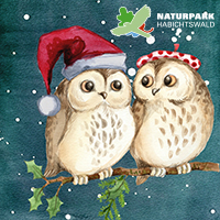 Naturpark Habichtswald Pixabay Weihnachtseulen Weihnachtsgrüße