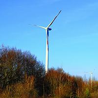 Naturpark Habichtswald Pixabay Windrad Windenergieanlagen – Auswirkungen auf das Ökosystem Wald?