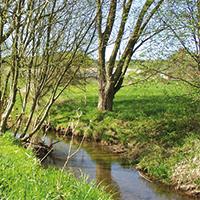 Naturpark Habichtswald_R-Brosche_Ahne