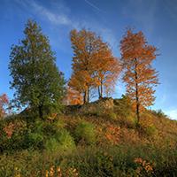 Naturpark Habichtswald_RKaufhold_Schauenburg