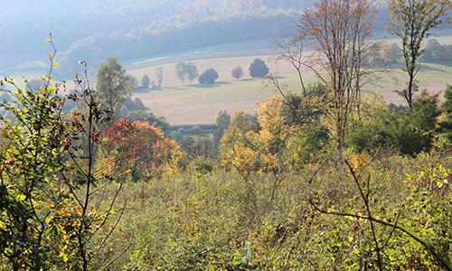 Naturpark Habichtswald SSchwarzer 2013 EcoPfad Im Tal der Quellen – Ein Spaziergang auf dem H6 rund um Bad Emstal