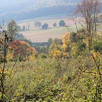 Naturpark Habichtswald SSchwarzer EcoPfad Emstal Inmitten der Höhenzüge des Naturparks