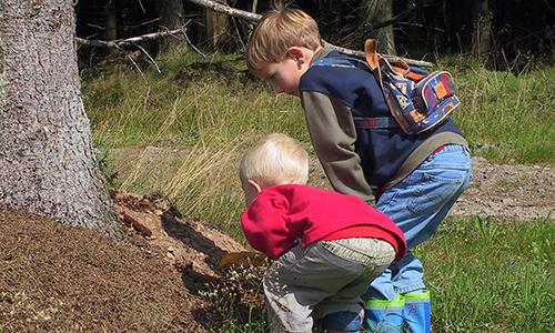 Naturpark Habichtswald VDN AKlein aufmerksames Staunen Mit Oma und Opa den Wald erkunden   Naturerlebnisse im Frühling