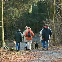 Naturpark Habichtswald_VDN_JBrenner_Wanderer