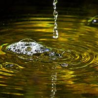 Naturpark Habichtswald_VDN_JBrenner_Wassertropfen