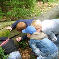Naturpark Habichtswald_VDN_Kinder