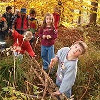 Naturpark Habichtswald_VDN_Patricia Erk_Waldnachmittag