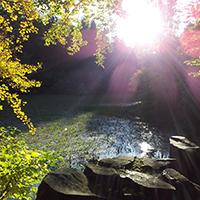 Naturpark Habichtswald_VDN_Sandra_Silbersee