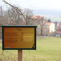 Naturpark Habichtswald_Waldpark Riede_Annika Ludolph (23)