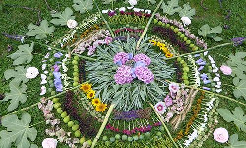 Naturpark Habichtswald pixabay Mandala Blumenmandalas – Eine Kräuterwanderung für Mädchen