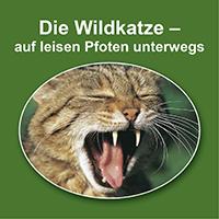 Vortrag Wildkatze