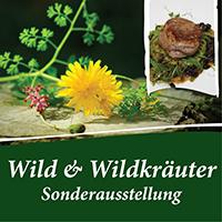 Wild und Wildkräuter