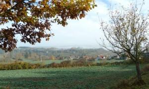 Blick zum Riedener Schlossberg (c) Naturpark Hirschwald