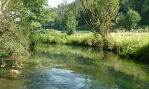 Das Vilstal vom Wasser  aus (c) Naturpark Hirschwald