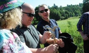 Der schottische Besuch begutachtet den Bio-Dinkel (c) Landkreis Amberg-Sulzbach
