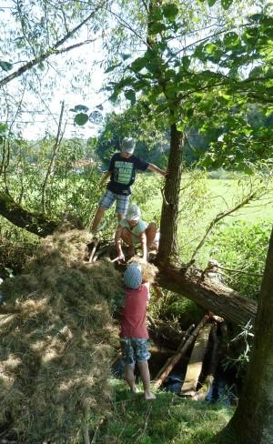 Ferienprogramm_1__c__Naturpark_Hirschwald