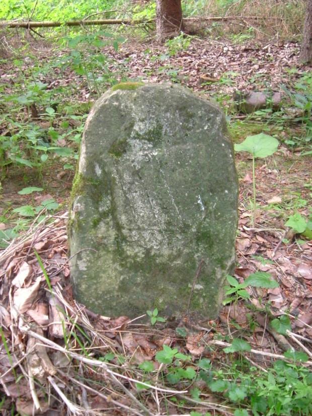 Grenzstein im Erlheimer Tal Stadtkammer Amberg 620x827 Winterwanderung im Hirschwald