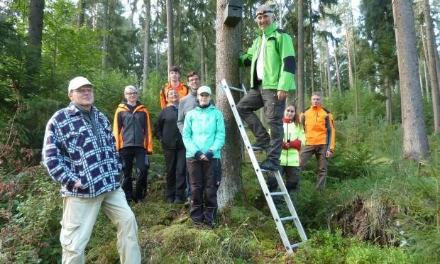 K1600 P1070129 620x372 400 Fledermauskästen für den Hirschwald