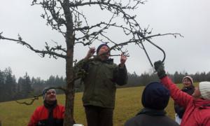 Naturpark Hirschwald Obstbaumkurs