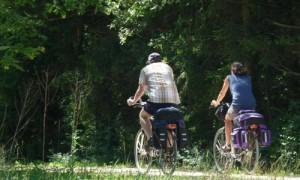 Radfahrer im Naturpark Hirschwald