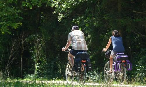 Radfahrer c Naturpark Hirschwald1 Zwei Radtouren im Naturpark Hirschwald im August
