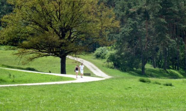 Wanderer Fuchsstein c Naturpark Hirschwald 620x371 Wandern unter weiß blauem Himmel 2014