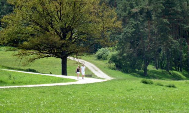 Wanderer Fuchsstein c Naturpark Hirschwald 620x372 Wildkräuterspaziergang im Ammerbachtal