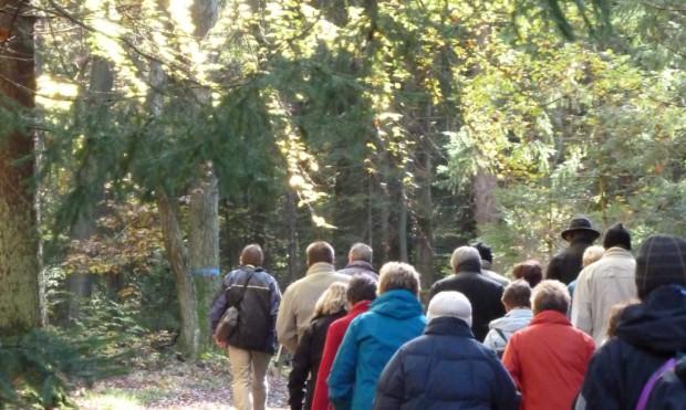 Wanderer im Wald 620x371 Frühlingserwachen im Naturpark Hirschwald