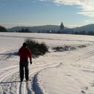 Skilanglauf im Naturpark Hirschwald