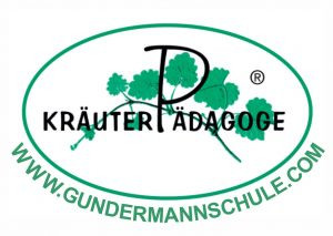 gundermannschule-1klein-300x213