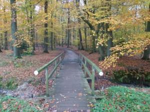 Holzbrücke -1