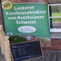Infos Hof Rülfing_D.B _1