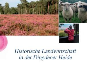Pressebericht Dingdener Heide