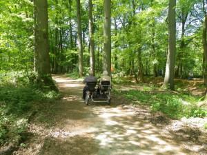 Foto Naturpark Hohe Mark - Westmünsterland
