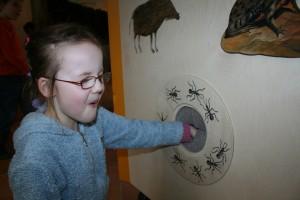 Ausstellung Naturpark-Haus