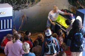 Führung durchs Naturpark Haus e1372324916396 300x197 Das Freiwillige Ökologische Jahr im Naturpark Haus – eine Alternative für Schulabgänger