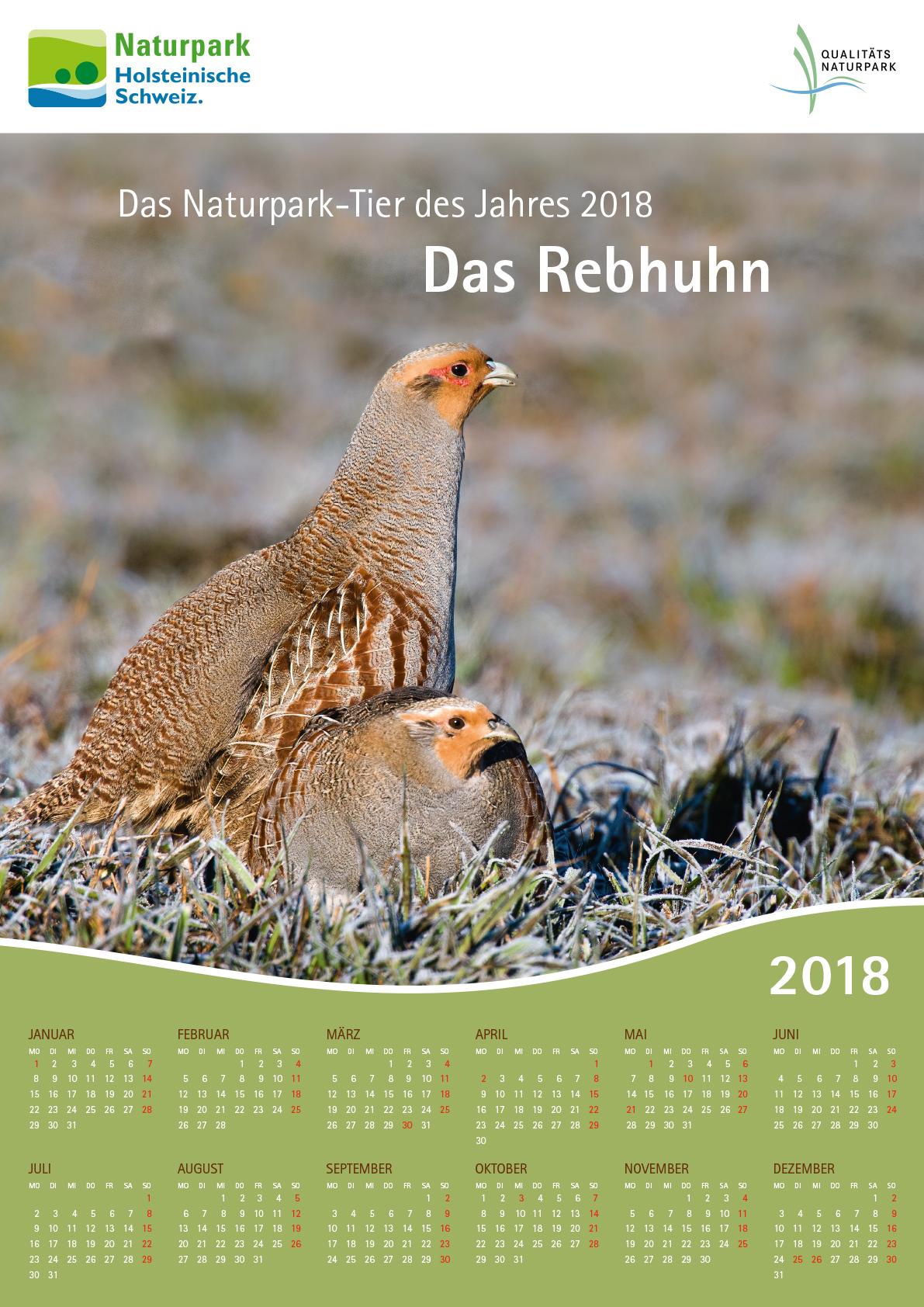 Foto Berndt Fischer Naturpark Tier 2018: Das Rebhuhn