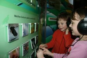 Geräuschememory im Naturpark-Haus