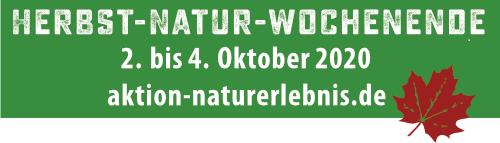 Herbst Natur WE Angebote des Eiszeitmuseums