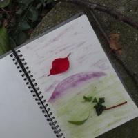 Malen mit Pflanzenfarben S_Hoenig