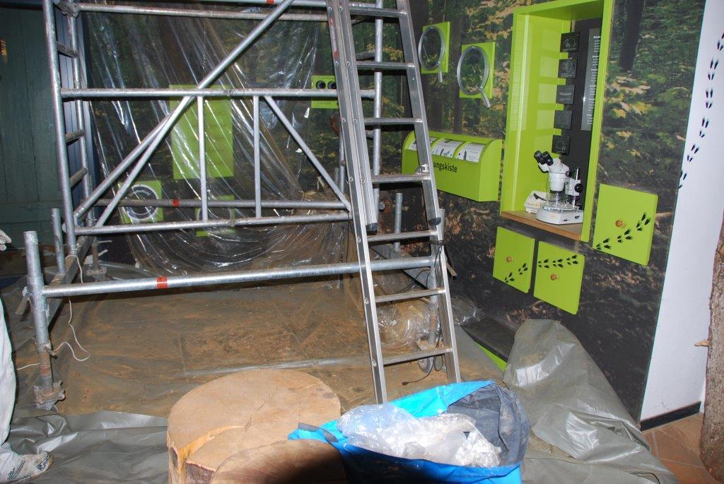 Sanierungsarbeiten in der Ausstellung Großer Schreck im Naturpark Haus