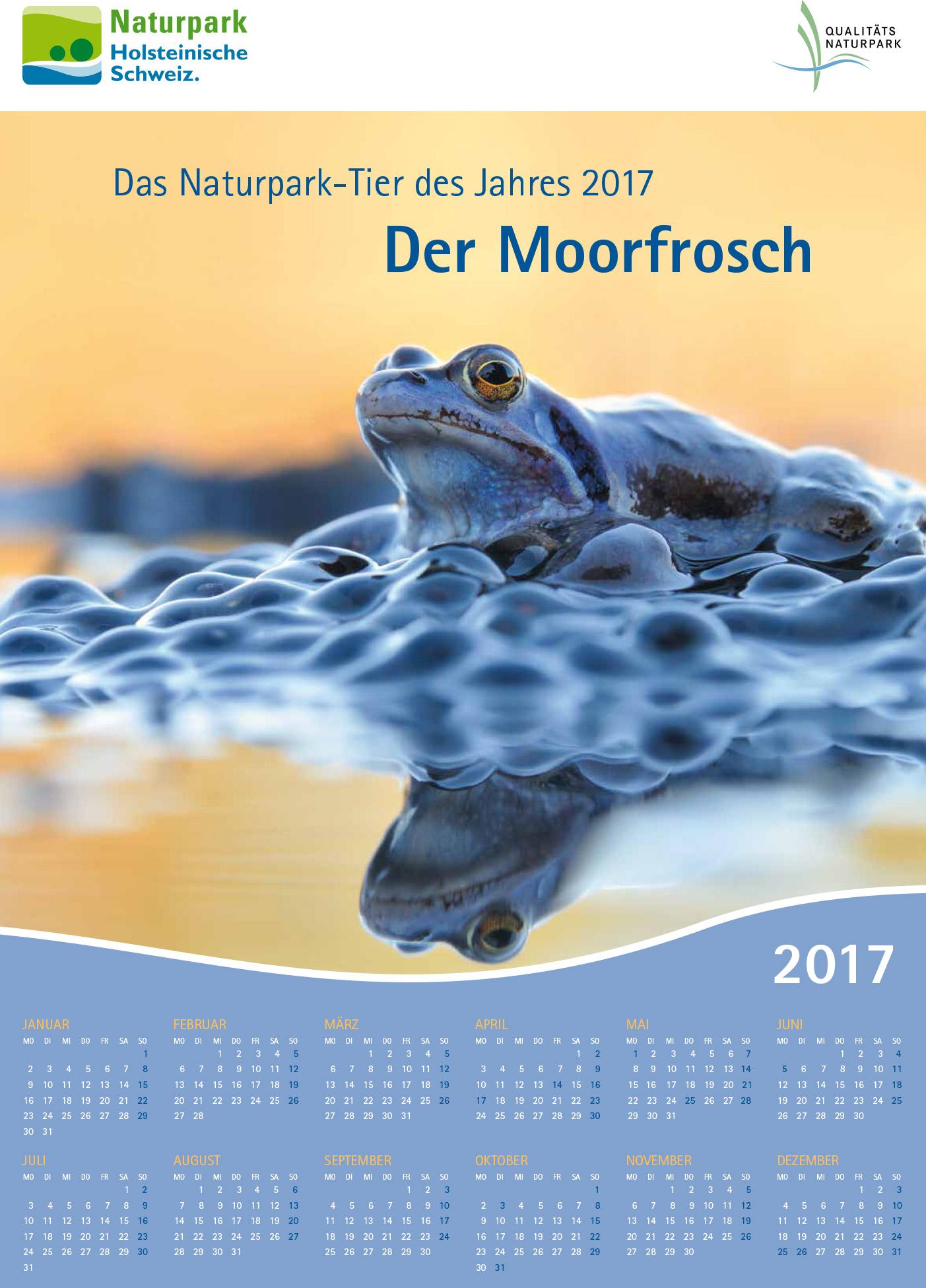 Tier des Jahres 2017 A3 web 1 Naturpark Tier des Jahres 2017: Der Moorfrosch