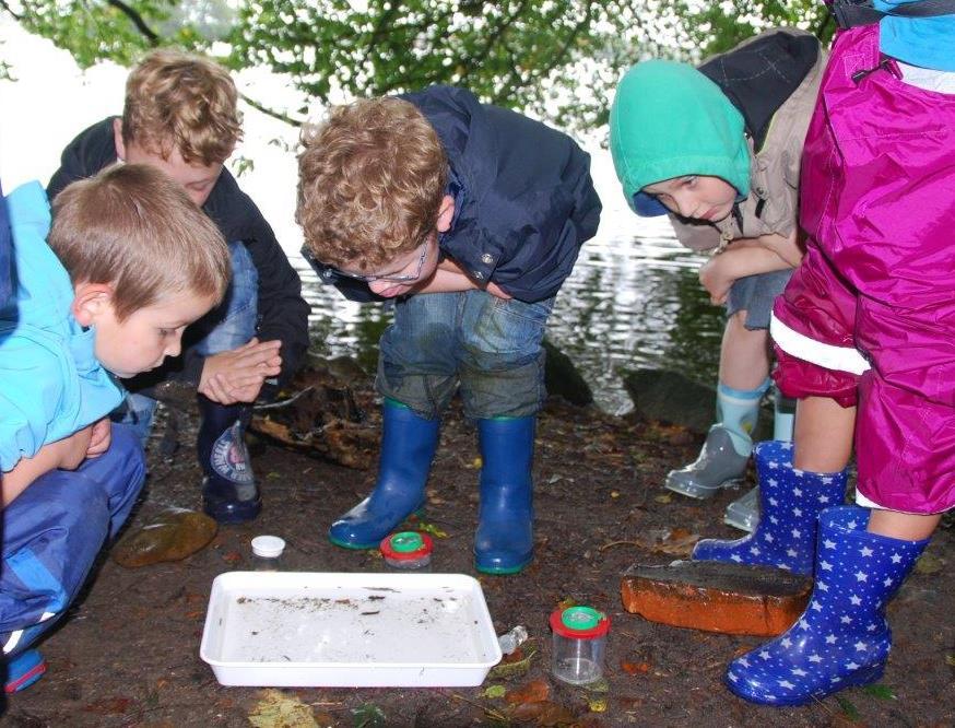 Wasserlebewesen erforschen Die Naturpark Ausstellung ist wieder geöffnet!