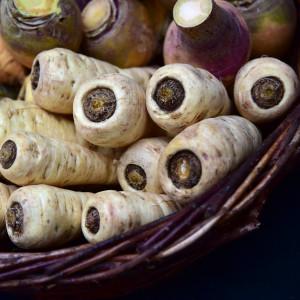 parsnips-wurzeln-roots_ulrike leone_pixabay