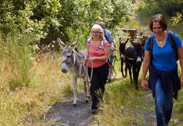 Eselwanderung 02 870x600 620x428 Eselwanderung: Natur Kultur Kulinarisches