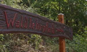 c Haiger Waldlehrpfad 300x180 Tipp des Monats