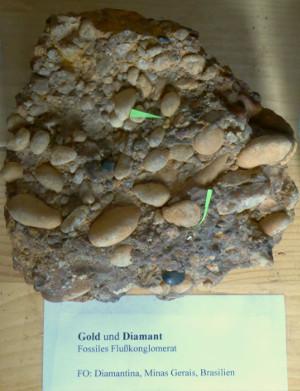 c Naturkundehaus Damm Fossiles Flußkonglomerat 300x391 Himmel und Erde