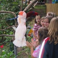 (c)_Herborn_Coco, Papageien und Kinder im Vogelpark_Q