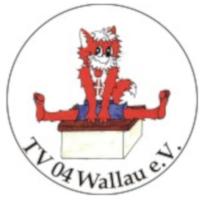 (c)_TV-Wallau_Kinderfasching_Q