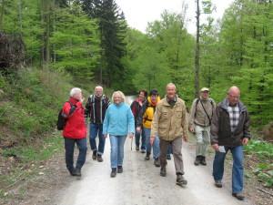 Pilger-Wandergruppe im Bramwald (c) Georg Hoffmann